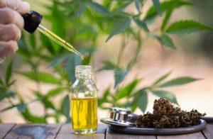 CBD Oil Dosage for Parkinson's Disease