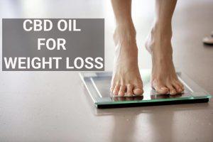 Minze für schnellen Gewichtsverlust