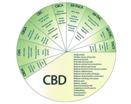 CBD oil benefits list