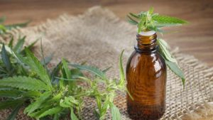 How to Make CBD Tincture