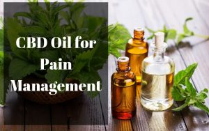 Image result for best cbd oil for pain
